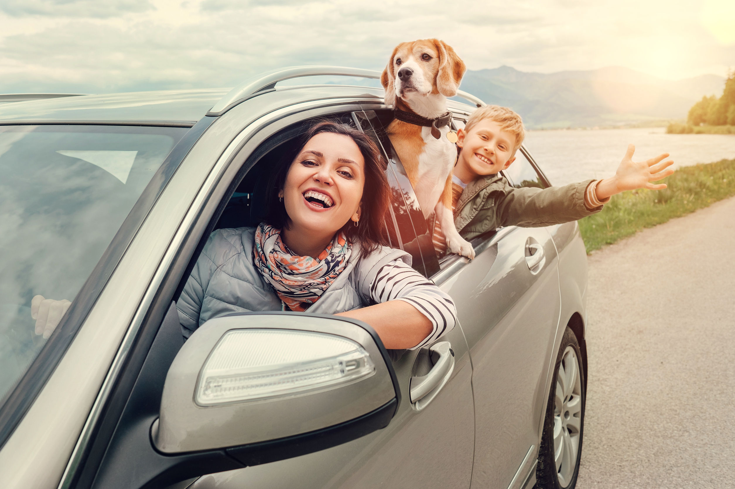 Becoming Well-Versed in Auto Insurance Image